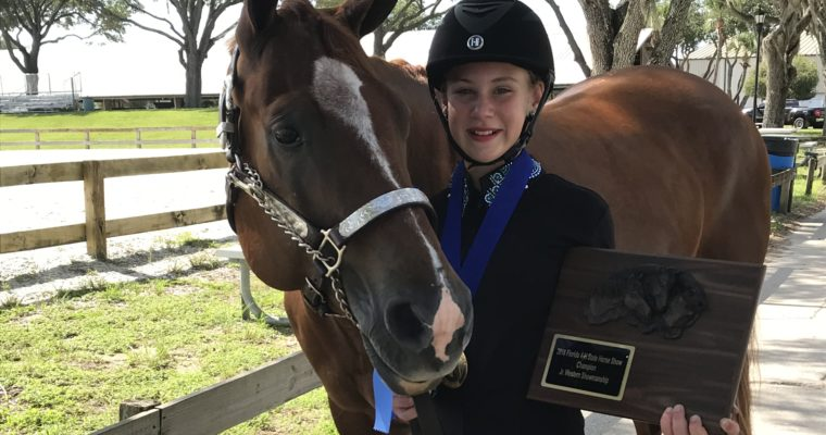 2018 4-H State Horse Show